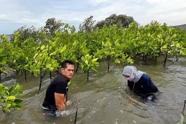 Paundra Hanutama dengan Mangrove Jakarta Community melakukan penanaman Bakau di Pantai Jakarta